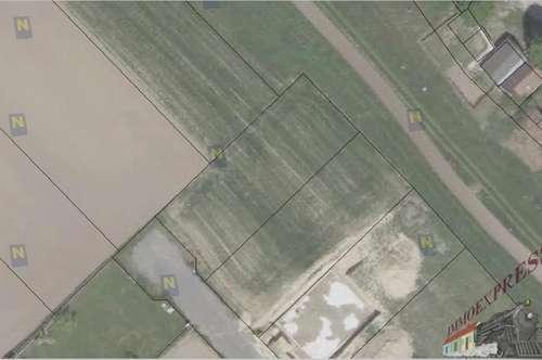 Grundstück in 2432 Schwadorf - auch für Bauträger geeignet !