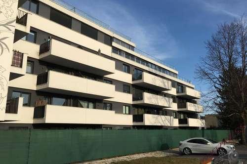2 Zimmerwohnung mit Terrasse und Garten vis a vis von Donauzentrum