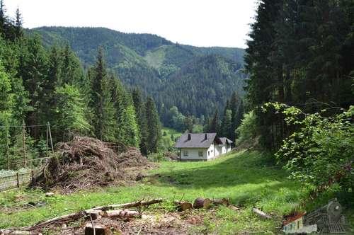 Mürztal Grundstück mit 17850 m² ruhig gelegen mit einer Wasserquelle und sanierungsbedürftigen Wohnhaus