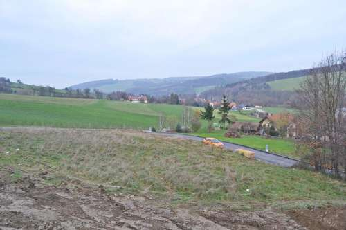 Gut gelegenes aufgeschlossenes Grundstück in Innermanzing - Nähe Altlengbach