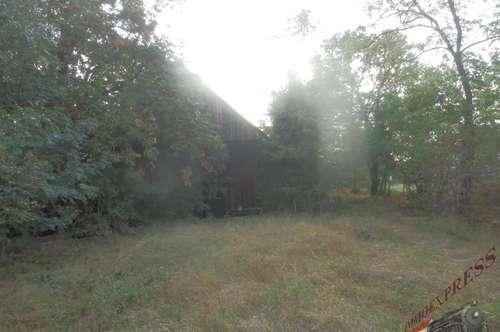 Riesen-Grundstück mit Abbruchhaus, Bauträgereignung