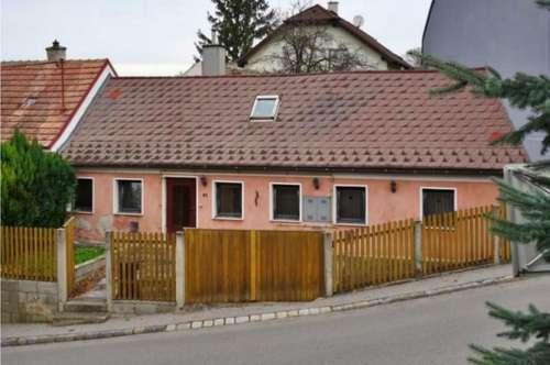 Zentrumsnahes Einfamilienhaus mit Gewölbekeller, samt Innenhof, Toreinfahrt und Terrassengarten