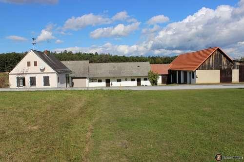 Sonniger Dreikanthof im Güssinger Hügelland