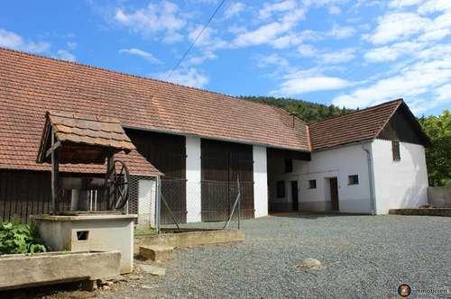 Nähe Kohfidisch: Nettes Bauernhaus mit großem Stadl!