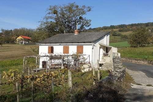 Kellerstöckl und Weingarten in Südhanglage!