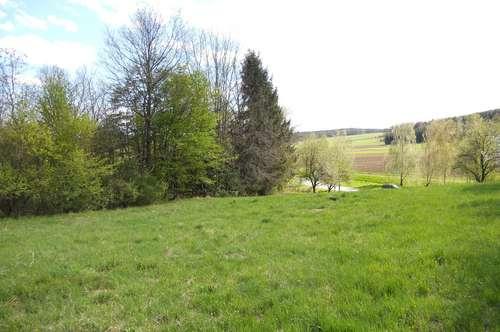 Nähe Oberwart: Sonniges Grundstück in erhöhter Lage