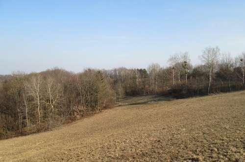 Jennersdorf: Großes Baugrundstück in Aussichtslage
