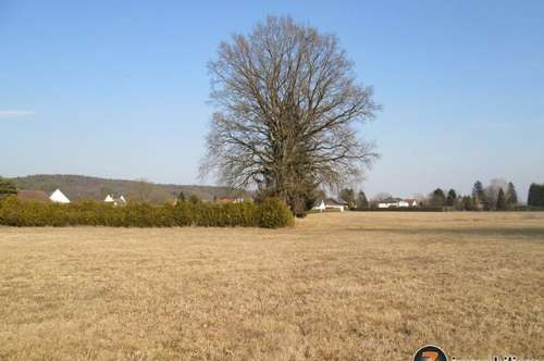 Nähe Jennersdorf: Arrondiertes Grundstück, 1,7 ha mit Bauland