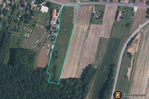 St.Kathrein: Grundstück mit Acker