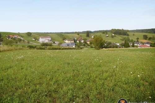 Bauplatz in der Grünland-Kellerzone