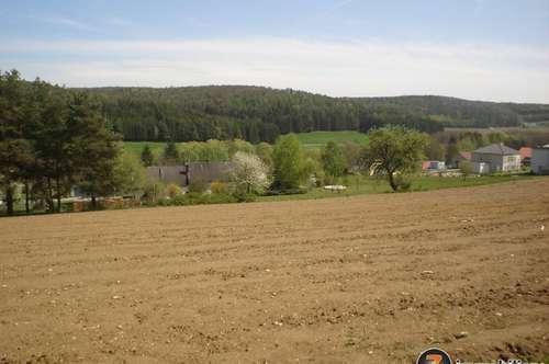 Sehr schönes Baugrundstück nahe Thermenresort Stegersbach