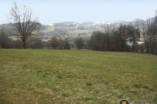 Nähe Fürstenfeld: Bauland neben Wald