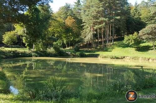 Nähe Oberpullendorf: Idyllische Fischteiche mit Wiese und Wald