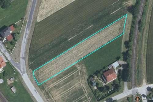 Oberwart: Baugrundstück zu verkaufen!