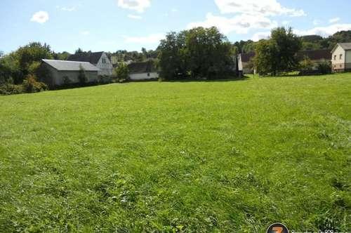 Schönes Grundstück - Bauerwartungsland