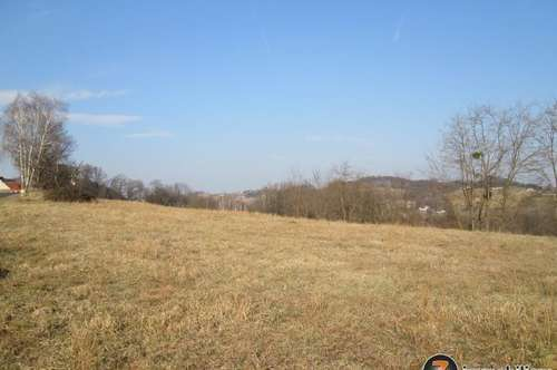 Nähe Jennersdorf: Großes Grundstück in Sonnenlage 1,5ha