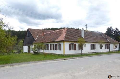 Nähe Bad Tatzmannsdorf: Urtümlicher Dreikanthof in ruhiger Ortsrandlage