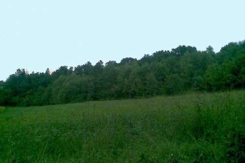 Golf und Thermengemeinde Stegerbach: Grundstück mit 19.922m² Gfl. (Ackerflächen und Wald)