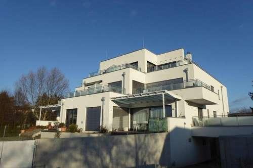 Großzügig angelegte, hochwertige Mietwohnung mit zwei Terrassen und PKW-Abstellplätze im Ungarviertel in 2700 Wiener Neustadt