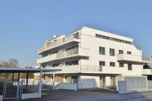 Neue gediegene und hochwertig ausgestattete Mietwohnung mit großem Balkon in Toplage in 2700 Wiener Neustadt