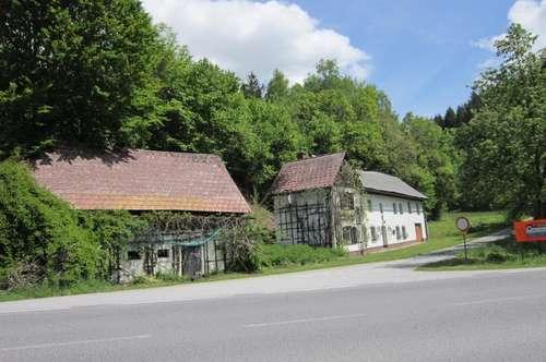 KAUFVEREINBARUNG!!! sanierungsbedürftiges Haus mit großem Grund und Fischteiche