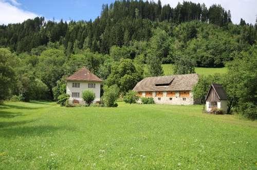Bauernhof in Marienheim - Grades im Metnitztal