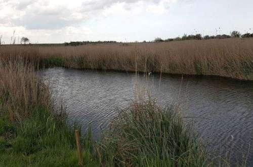FT01/19 * Fischteich mit Landwirtschaftliche Fläche