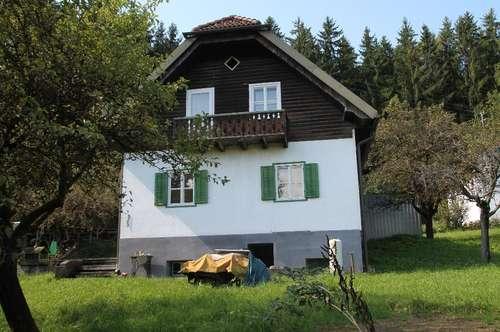 Kleines Häuschen mitten im Görtschitztal-Klein St. Paul