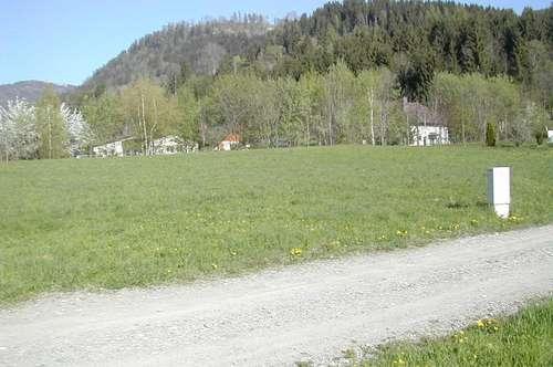 sonnige Baugrundstücke in St. Salvator bei Friesach