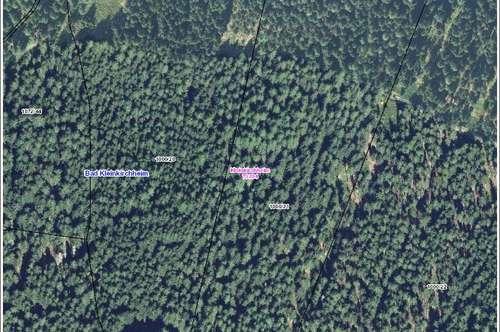 Waldparzelle nähe Maibrunnbahn in Bad Kleinkirchheim zu verkaufen, sehr gut bestockt