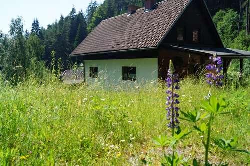 Häuserl im Wald in erhöhter Lage!