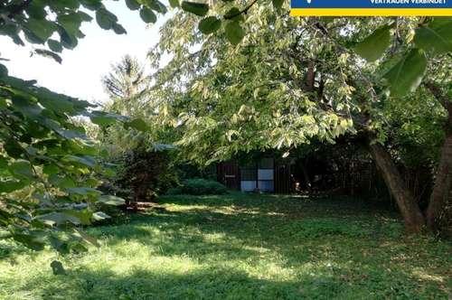 Dachgeschoß-Wohnung mit großem Obstgarten