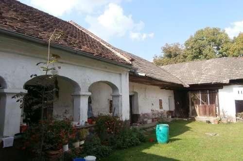 Altes orig. Bauernhaus in Ortslage!