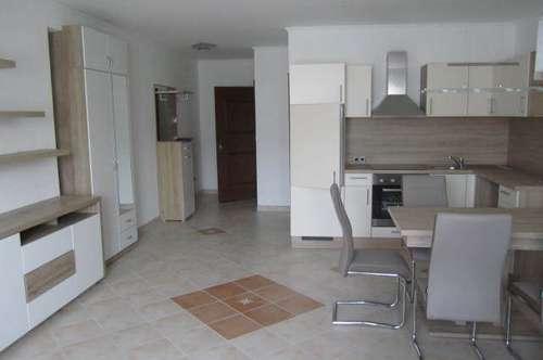 Piesting: Tolle, neu renovierte Single-Wohnung mit Gartenbenützung in guter Lage