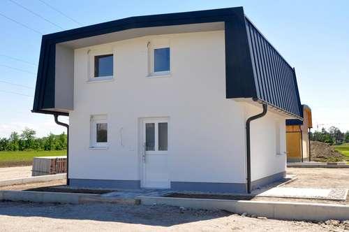 """SPRINGSFIELD 2.0 - Kleingartenhaus """"Springsfield"""" als Hauptwohnsitz"""