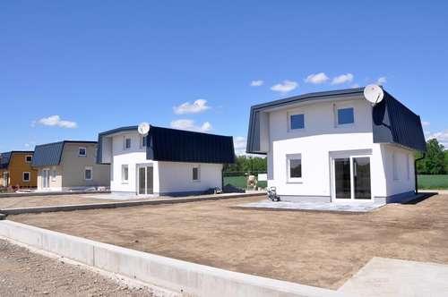 SPRINGSFIELD 2.0 - Kleingartenhäuser als Hauptwohnsitz