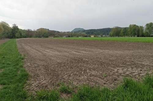 Bauerwartungsflächen, Wald, Grünflächen , Velden-Rosegg