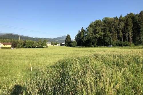 Gewerbegrund in Bad Vigaun
