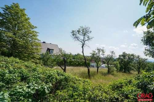Top Grundstück für Ihr Traumhaus - Baugrund zu kaufen in 2722 Winzendorf