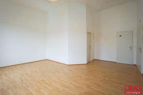 sehr gut aufgeteiltes Single-Apartment im Zentrum der Altstadt in 3500 Krems zu mieten