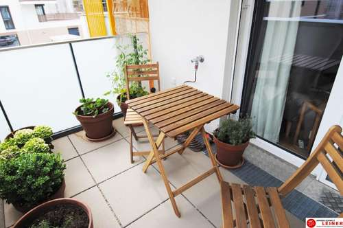 Großzügige Einzimmerwohnung mit Tiefgaragenplatz in Schwechat
