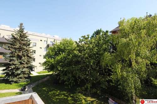 ACHTUNG KAUFANBOT LIEGT VOR! Schwechat - Eigentumswohnung direkt neben dem Schlosspark - hier will ich leben