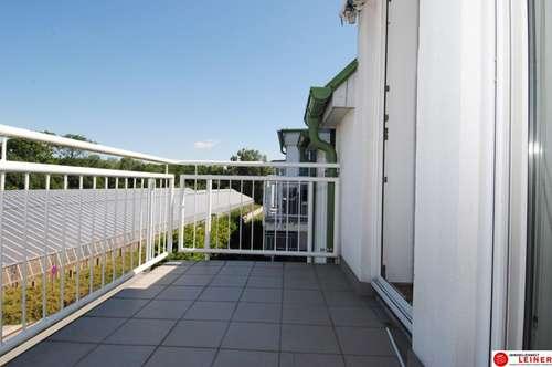 Hell und ruhig 3 Zimmer Balkon-Mietwohnung direkt bei der Au