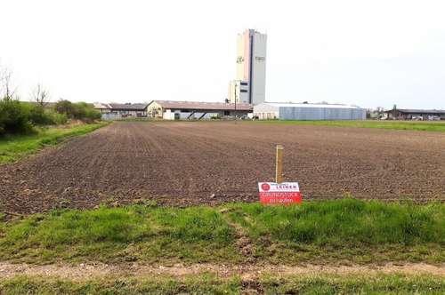 Betriebsbaugrund in Enzersdorf an der Fischa