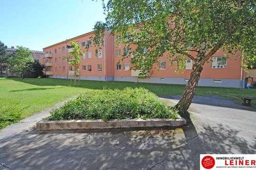 Schwechat - nette 1 Zimmer Mietwohnung mit Balkon direkt beim Felmayergarten