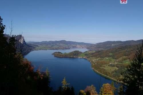 St. Lorenz: Grünfläche mit Wald zu verkaufen
