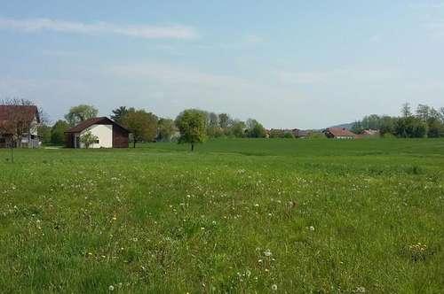 Sonniges Grundstück inkl. Einfamilienhaus Edelrohbau in Traumhafter Grünlage !