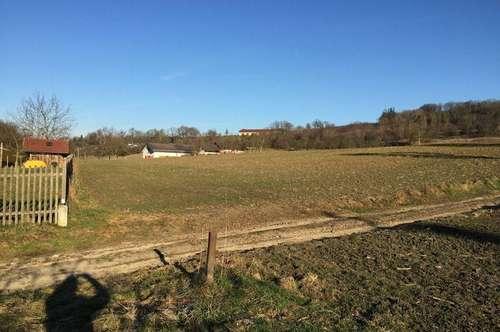 Landidylle Eferdinger Becken : Ruhig, Leistbar & Verkehrsgünstig im Zentralraum