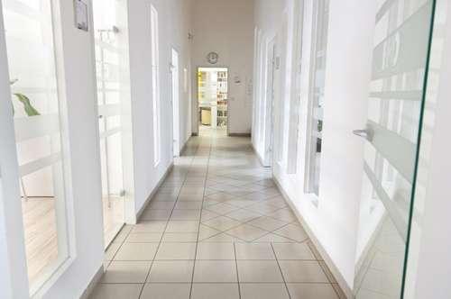 Hallenflächen mit eigener Zufahrt, Laderampen und PKW Parkplätzen an der B1    plus bis zu 2000 m2 Halle neben Pluscity