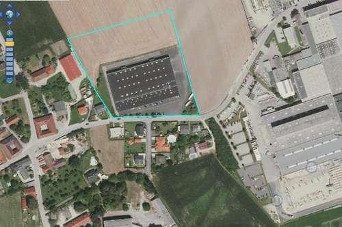Große Halle mit Büro und Gewerbegrundstück insgesamt 21838 m2 !